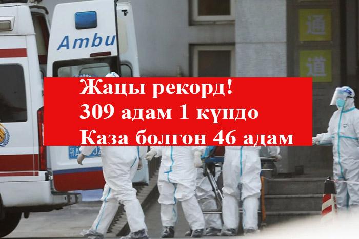 Эң көп!  309 адам 1 күндө! Каза болгондор 3