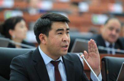Жанар Акаев: «Түрмөдө жаткан депутат добуш берди, бул шерменде конституция болот!»
