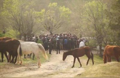 Видео. Кыргыздар жашаган жерлер Өзбекстанга өтүп кеткенин тастыктады